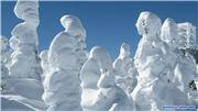Snow monsters !, uploaded by 1worldimages