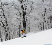 Not crowded, so this skier is going for it., uploaded by Dara Francis