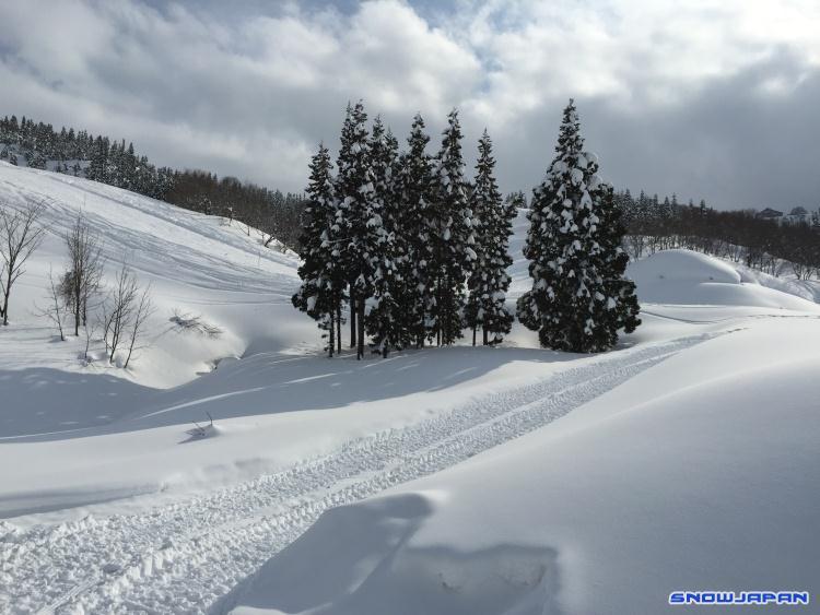 Joetsu Japan  city photos gallery : Joetsu Kokusai photos | Japan ski photos | Minamiuonuma City | Niigata ...