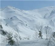 Not super steep but 1000 meters of powder heaven. lookers left line all mine, uploaded by Fattwins  [Hakuba Happo-one, Hakuba Village, Nagano]