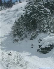 Hakuba, BC, Powder, riding, uploaded by Fattwins