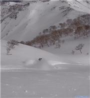 Hakuba Powder, uploaded by Fattwins  [Hakuba Happo-one, Hakuba Village, Nagano]