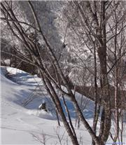 powder hakuba, uploaded by Fattwins