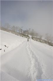 Hiking - Photo by Glen Claydon, uploaded by Jishipi  [Niseko Mountain Resort Grand Hirafu, Kutchan Town, Hokkaido]