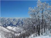 March 30th 2010, uploaded by Matt  [Hakuba Cortina, Otari Village, Nagano]