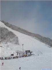 Anybody for first tracks?, uploaded by Mick Rich  [Hakuba Cortina, Otari Village, Nagano]