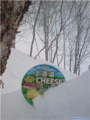 "In the ""b"" trees, uploaded by Mick Rich  [Ryuoo Ski Park, Yamanouchi Town, Nagano]"