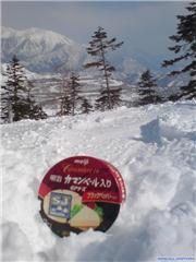 cheese in trees!, uploaded by Mick Rich  [Kagura, Yuzawa Town, Niigata]