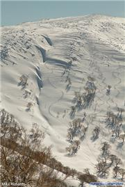 Takeshi Kodama's line on the N Face of Yoichidake, uploaded by MikePow  [Kiroro Snow World, Akaigawa Village, Hokkaido]