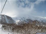 Looking up, uploaded by Tex  [Niseko Mountain Resort Grand Hirafu, Kutchan Town, Hokkaido]