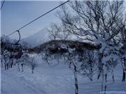 Yotei through the trees, uploaded by Tubby Beaver  [Niseko Mountain Resort Grand Hirafu, Kutchan Town, Hokkaido]