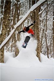 Endless mini-hits through the trees, uploaded by spook  [Akakura Onsen, Myoko City, Niigata]