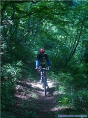 MTB Hakuba, uploaded by stemik